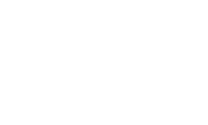C4 Photo Safaris